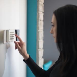 Wat zijn de voor- en nadelen van een alarmsysteem?
